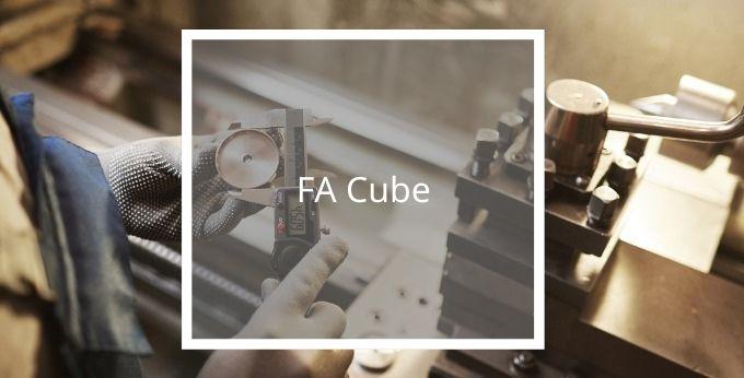 FA Cube